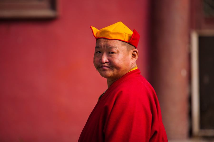 Monk in Mongolia