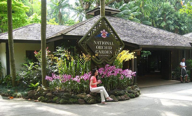 Сингапур. Национальный сад орхидей (The National Orchid Garden).